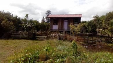 Tanah 11805kps - Bangunan di Kg Pantai Pak Amat,Taman Buaya