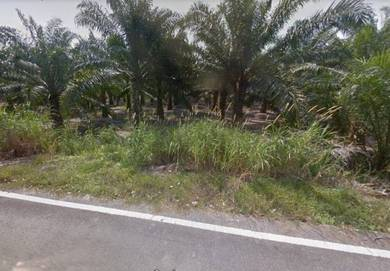 Sepang Sungai Pelak Freehold Land For Sale