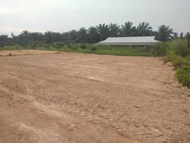 Tanah Lot Untuk Dijual: Parit Lintang 1, Separap, Parit Sulong