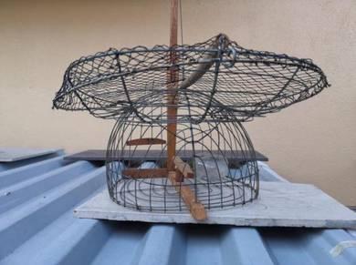 Jebak Burung / Murai