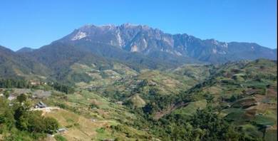Banglo Lot Kundasang