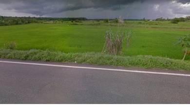 Bertam land for sale