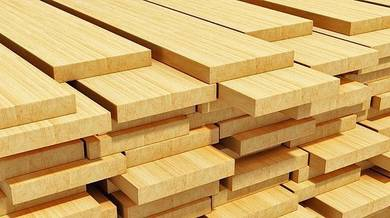 Pine wood import for furniture