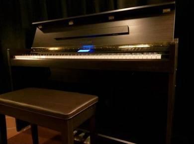 HAILUN Digital Piano DUQiii(Display)
