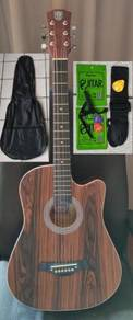 Acoustic Guitar With Truss Rod Techno TR38 Brown