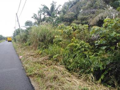 Tanah Pertanian di Rengit, Johor