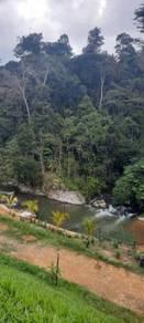 [FREEHOLD] TANAH TEPI SUNGAI JANDA BAIK, Sesuai Buat Resort