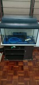 2 1/2feet aquarium