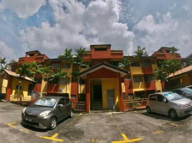 Value Buy Winner Heights Fully Furnished & Renovated