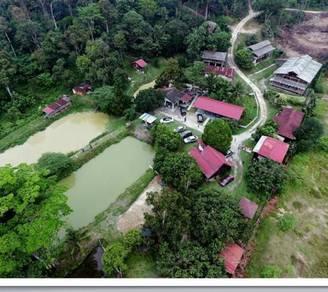 Homestay Nurfarm, Hulu Langat, Selangor