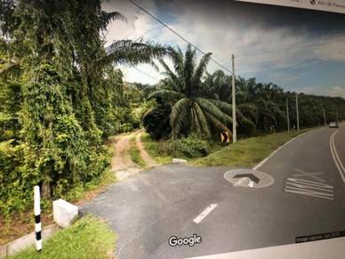 30 acres agriculture land(palm oil) for sell, rembau, seremban