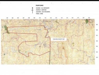 6719 arces Fully planted oil palm estate Kelantan,Gua Musang