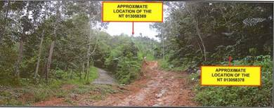 2 lots land for rent within the locality Kampung Pulutan