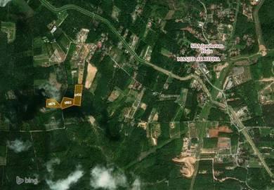 (JALAN UTAMA)3 Lot Tanah Pertanian Untuk Dijual Dengkil
