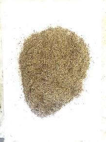 Agarwood Dust For Sale | Habuk Kayu Gaharu