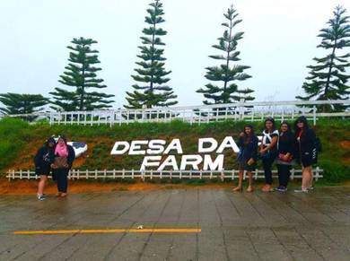 Holidays Travel in Sabah