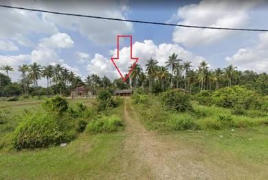 Below Market 35% - 1.24 Acre Agricultural land, Kampung Rusa, Bachok