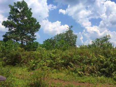 1 Acre Agricultural Land (Tanaman Dusun) in Mukim Pengerang, Johor