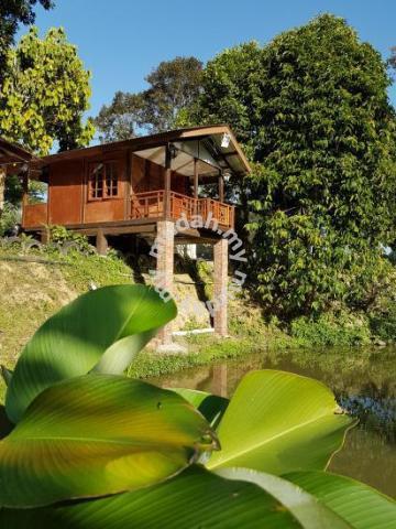 Laman Ibu Janda Baik Accommodation Homestays For Rent In Bentong Pahang