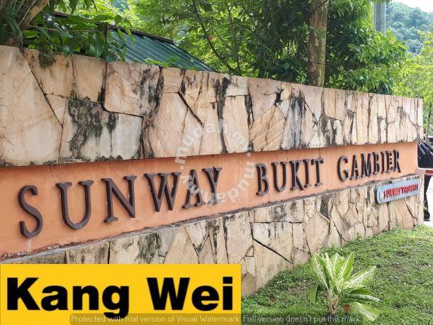 Sunway Bukit Gambier Terrace House_Renovated_Guarded_USM - Houses for sale  in Gelugor, Penang