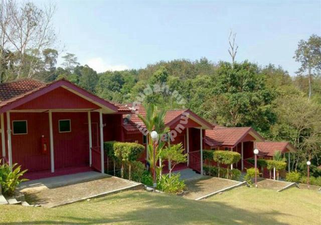 Serene Resort Training Centre Janda Baik Accommodation Homestays For Rent In Bentong Pahang Mudah My