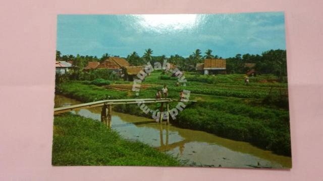 Antik Old PC Vegetable Farm 1970s No 602 - Hobby & Collectibles for sale in  Saujana Utama, Selangor
