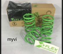 Perodua myvi viva alza spring 4flex lowered