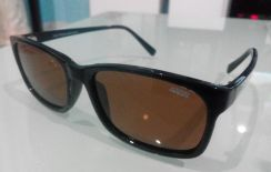 IDEAL SUNGLASSES (8884 Brown)