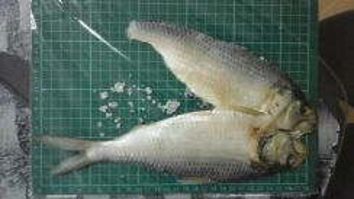 Ikan asen telubuk sarawak