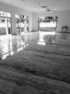 Floor polishing marble and parquet