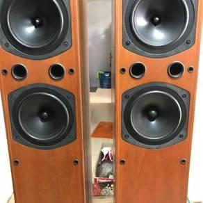 Speaker goodmans