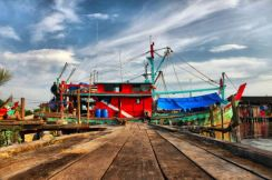 AMI Travel | Sekinchan + Fishing Village Tour