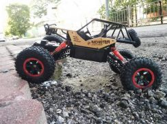 4WD RC Crawler Mooster