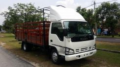 Isuzu Npr71/New Registered 2018/Bdm7500kg