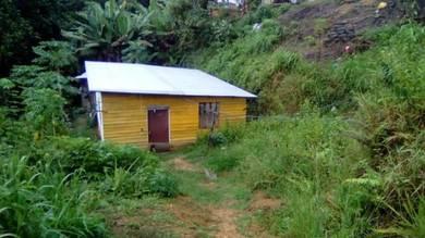Lot dan rumah papan menggatal