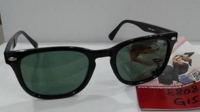Ideal sungalsses (8808 g15)