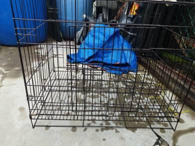 Sangkar Kucing / Anjing