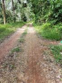Jelebu Simpang Pertang 3 acres agriculture freehold land