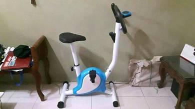 Evercises bike indoor