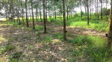 1-ST GRADE LAND FREEHOLD - (0.51-Ac) Bandar Putra Bertam, Kepala Batas