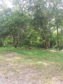 Town Lease land in Signal Hill near Bayshore Condominium