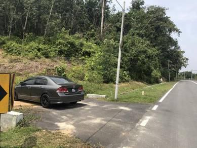 Tanah Getah di Kampung Panchang Rembau