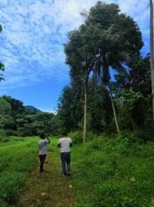 Tanah 2.4 Ekar, ANAK SUNGAI Batu 18 HULU LANGAT untuk Di jual