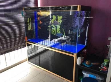 Stylish Crystal clear glass arowana aquarium