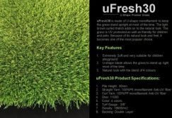 High Grade Artificial Grass Supply in Penang
