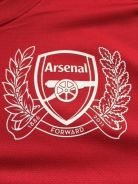 Arsenal 2011/2012 Home 125 years Annivesary sz L