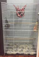 New BIG Sugar Glider or Bird Cage