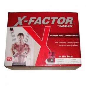 X Factor Door Gym Workout Equipment