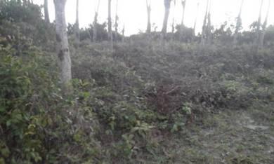 Tanah untuk pertanian 2 km dari Kuala pilah