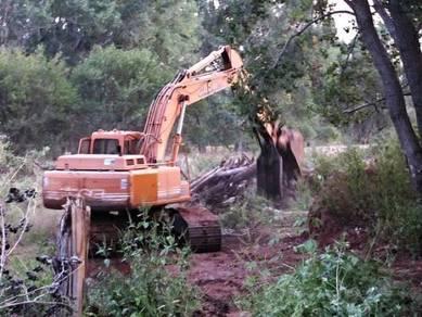 Bersih kawasan Hutan & Bersih kawasan & Kebun NS